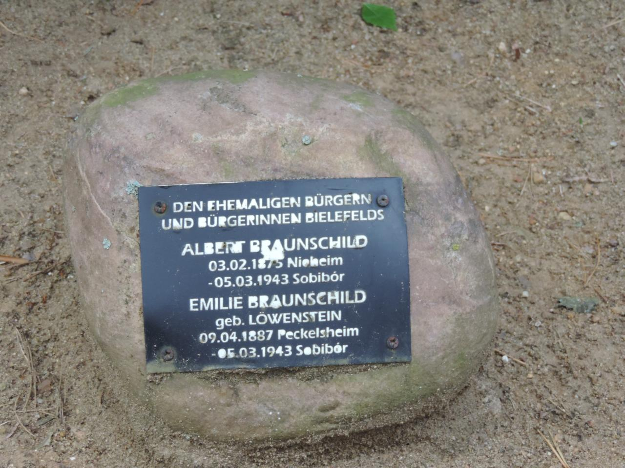 Albert Braunschild Emilie Braunschild