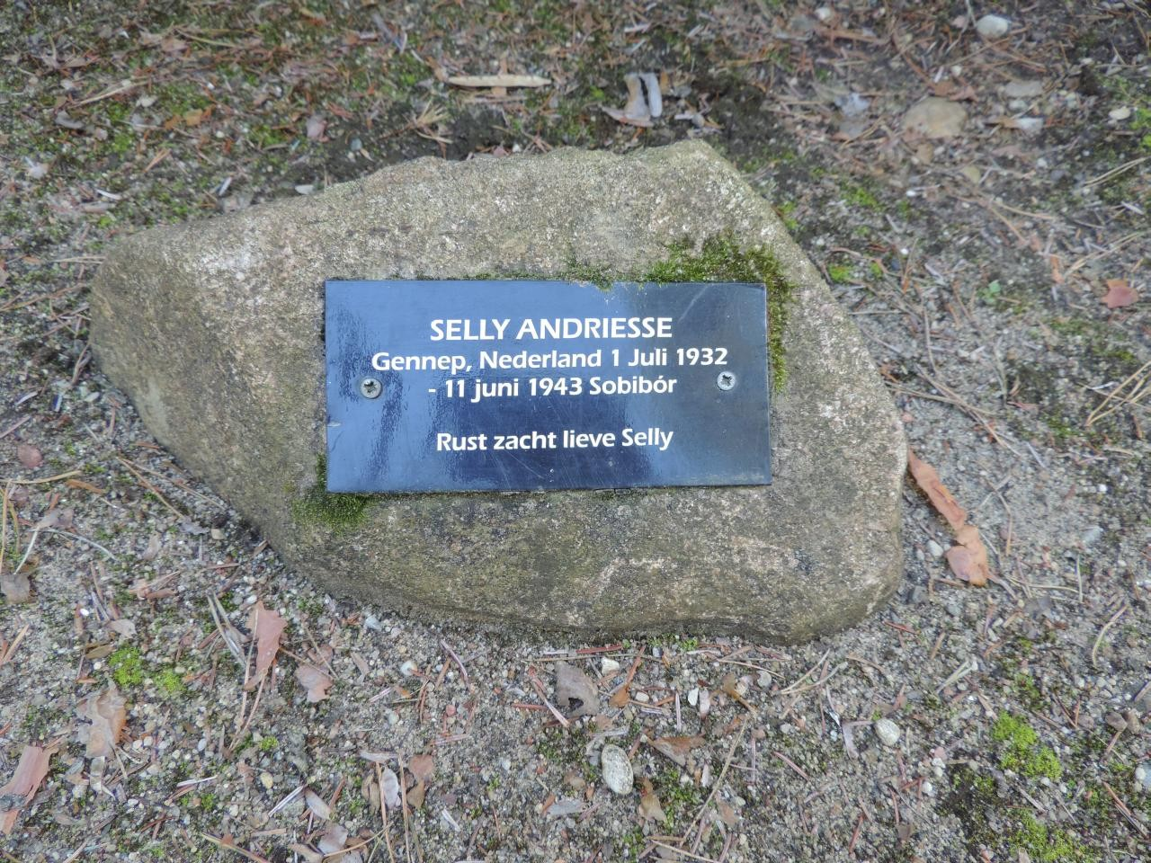 Selly Andriessen mehr...